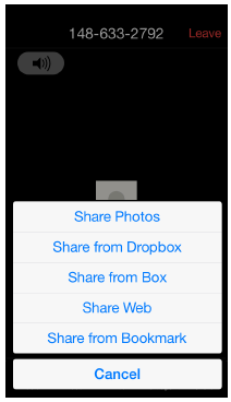 iPhone Share Screen options