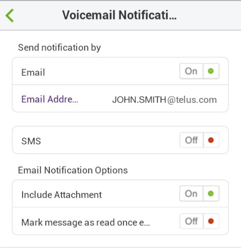 Call Queue Notifications Options