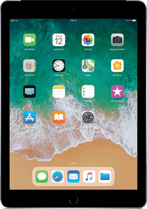 iPad (6e génération), Gris cosmique