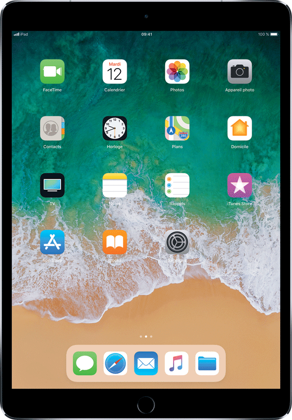 iPad Pro (10,5 po)